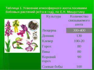 Таблица 1. Усвоение атмосферного азота посевами бобовых растений (кг/га в год
