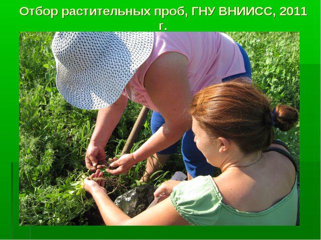 Отбор растительных проб, ГНУ ВНИИСС, 2011 г.