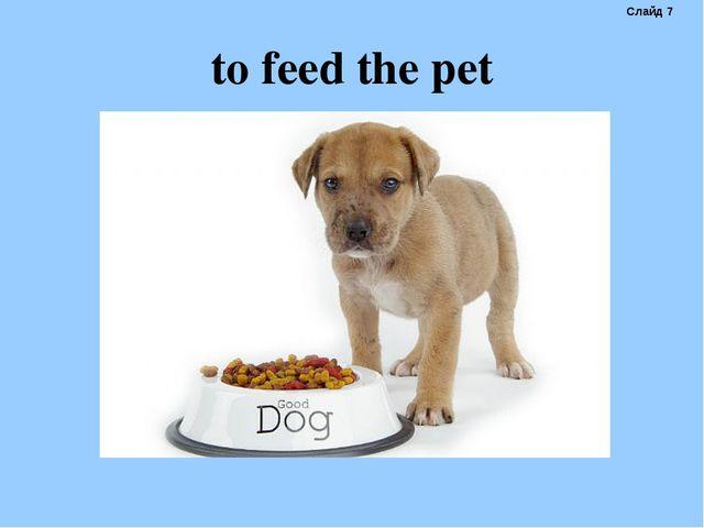 to feed the pet Слайд 7