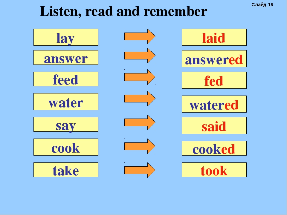 answer laid feed water say cook lay answered fed watered said cooked take too...