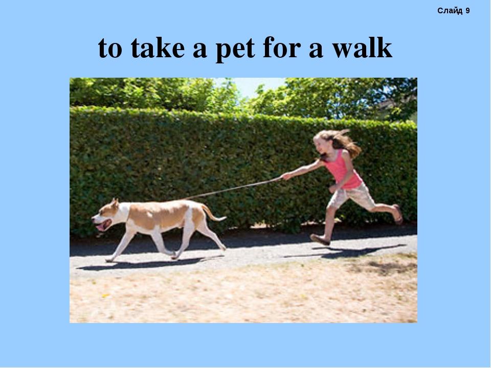 to take a pet for a walk Слайд 9