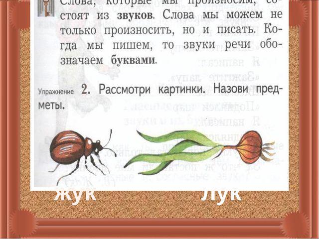 жук лук