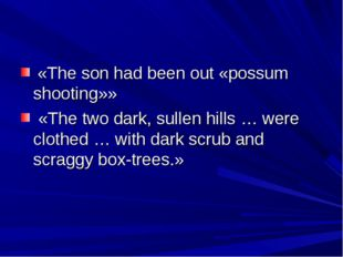 «The son had been out «possum shooting»» «The two dark, sullen hills … were