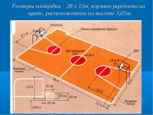 Размеры площадки – 28 х 15м, корзина укреплена на щите, расположенном на выс