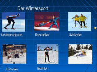 Der Wintersport Eishockey Biathlon Schlittschuhlaufen Eiskunstlauf Schilaufen