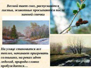 Весной тает снег, распускаются листья, животные просыпаются после зимней спяч