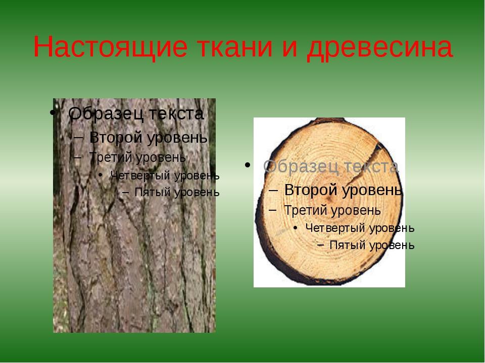 Настоящие ткани и древесина