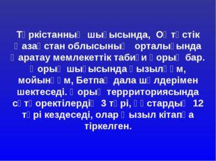 Түркістанның шығысында, Оңтүстік Қазақстан облысының орталығында Қаратау мем