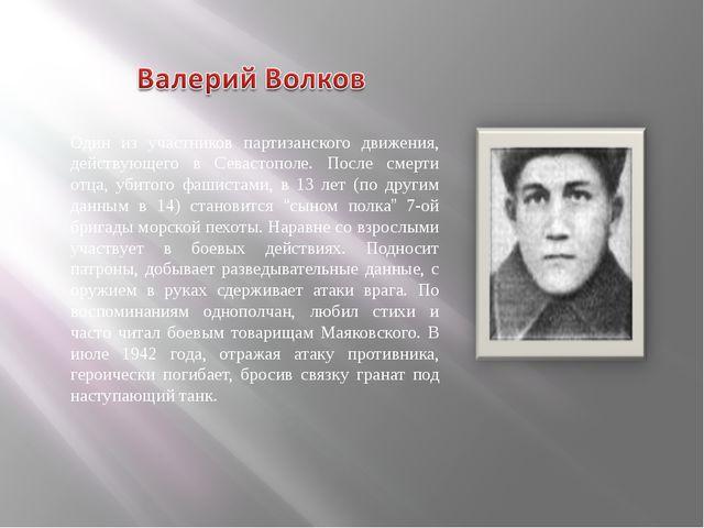 Один из участников партизанского движения, действующего в Севастополе. После...