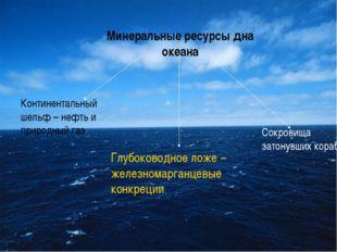 Минеральные ресурсы дна океана Континентальный шельф – нефть и природный газ