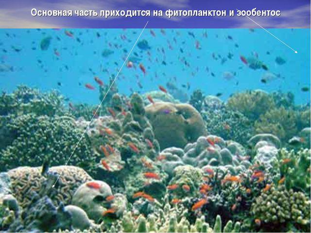 Основная часть приходится на фитопланктон и зообентос