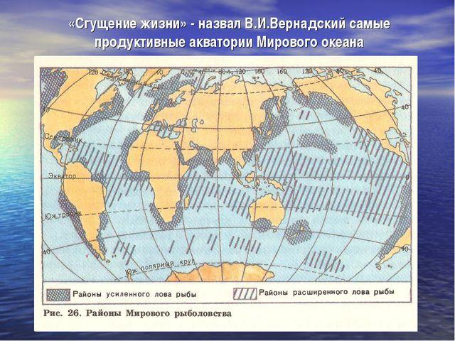 «Сгущение жизни» - назвал В.И.Вернадский самые продуктивные акватории Мировог...