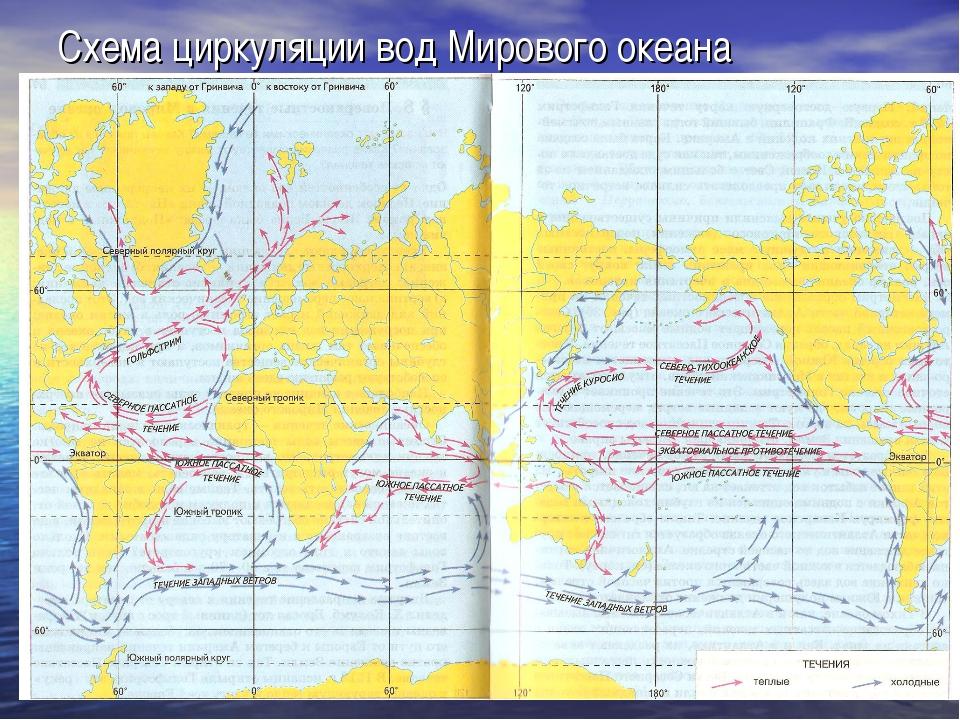 Схема циркуляции вод Мирового океана