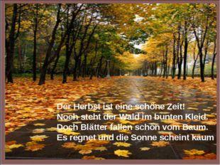 Der Herbst ist eine schöne Zeit! Noch steht der Wald im bunten Kleid. Doch Bl