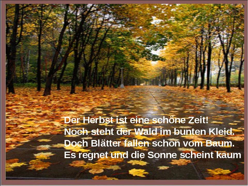 Der Herbst ist eine schöne Zeit! Noch steht der Wald im bunten Kleid. Doch Bl...