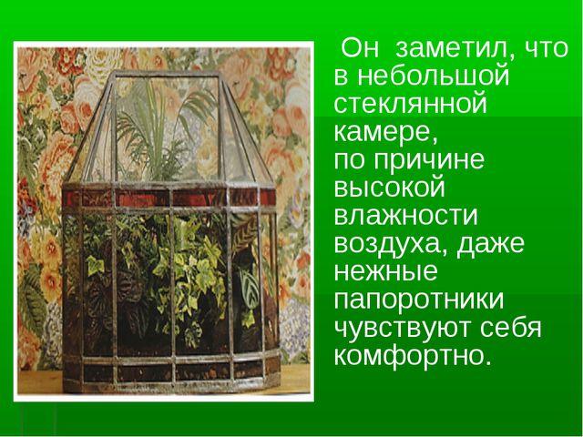 Он заметил, что внебольшой стеклянной камере, попричине высокой влажности...
