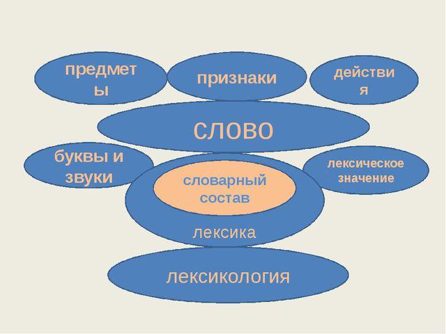 слово предметы признаки действия лексическое значение буквы и звуки лексика...