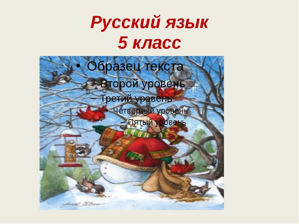Русский язык 5 класс