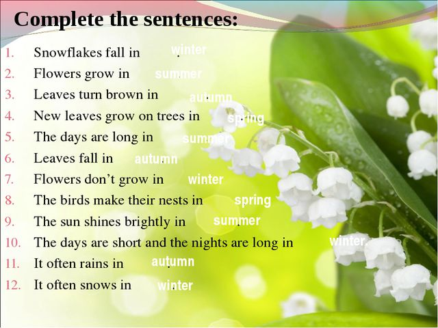 Complete the sentences: Snowflakes fall in . Flowers grow in . Leaves turn br...