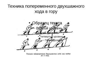 Техника попеременного двухшажного хода в гору