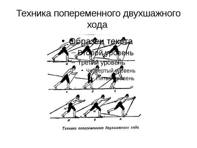 Техника попеременного двухшажного хода