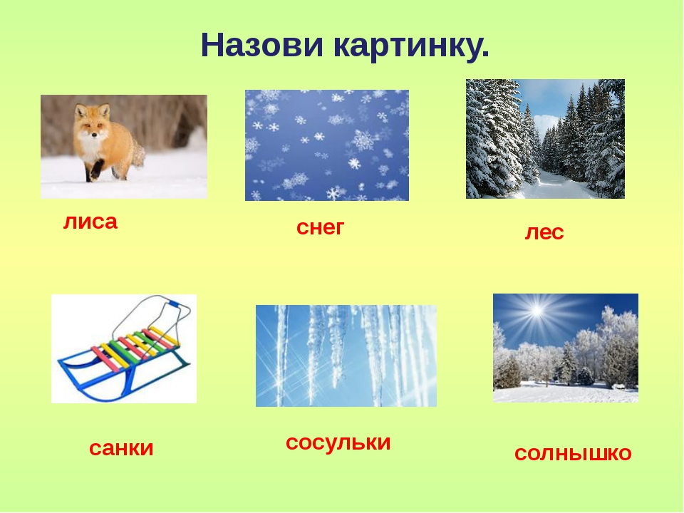 Назови картинку. лиса снег лес солнышко санки сосульки