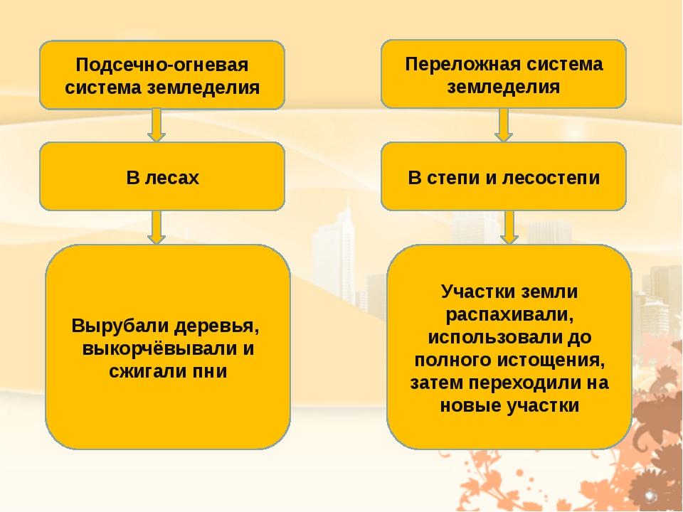 Подсечно-огневая система земледелия Переложная система земледелия В лесах В с...