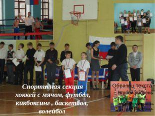 Спортивная секция хоккей с мячом, футбол, кикбоксинг , баскетбол, волейбол