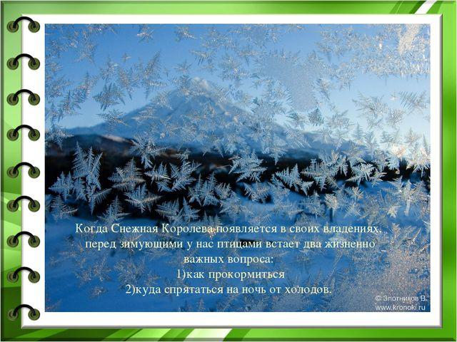 Когда Снежная Королева появляется в своих владениях, перед зимующими у нас пт...