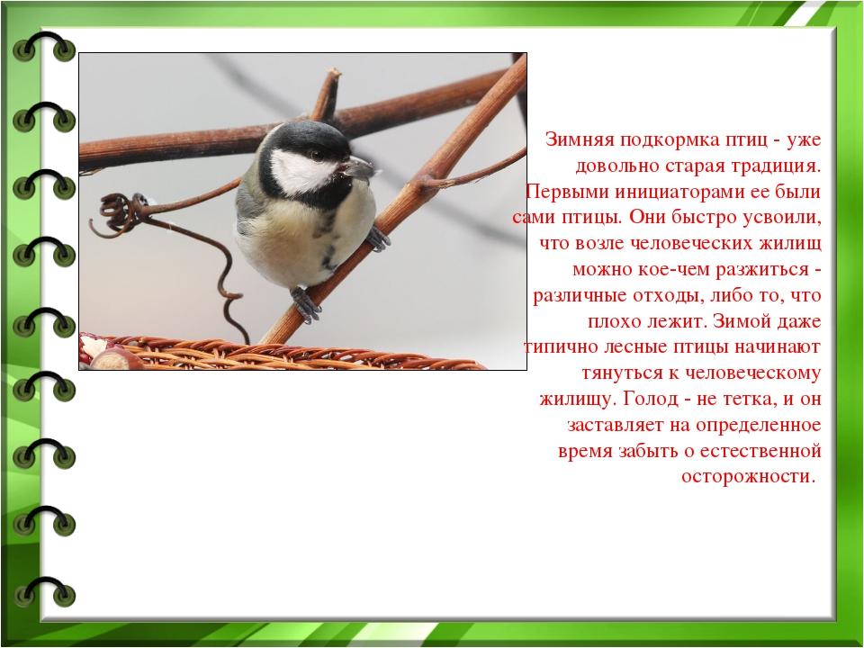 Зимняя подкормка птиц - уже довольно старая традиция. Первыми инициаторами ее...
