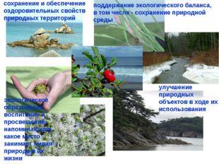 поддержание экологического баланса, в том числе - сохранение природной среды