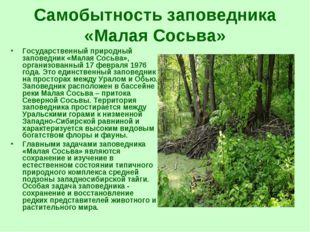 Самобытность заповедника «Малая Сосьва» Государственный природный заповедник