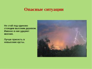 Синквейн по теме урока «Лесные опасности» 1 Опасности 2 лесные, бытовые 3 под