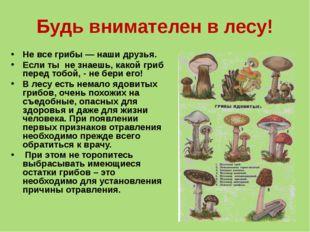 Будь внимателен в лесу! Не все грибы — наши друзья. Если ты не знаешь, какой