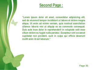 "Second Page : ""Lorem ipsum dolor sit amet, consectetur adipisicing elit, sed"