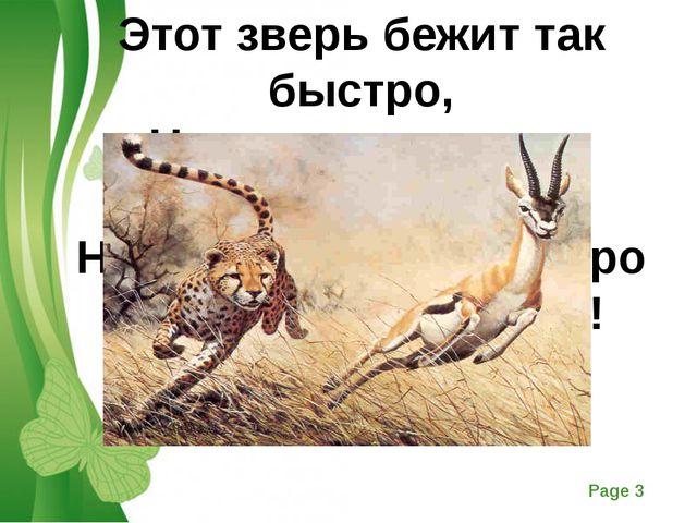 Этот зверь бежит так быстро, Что догнать его — никак. Но свою добычу шустро...