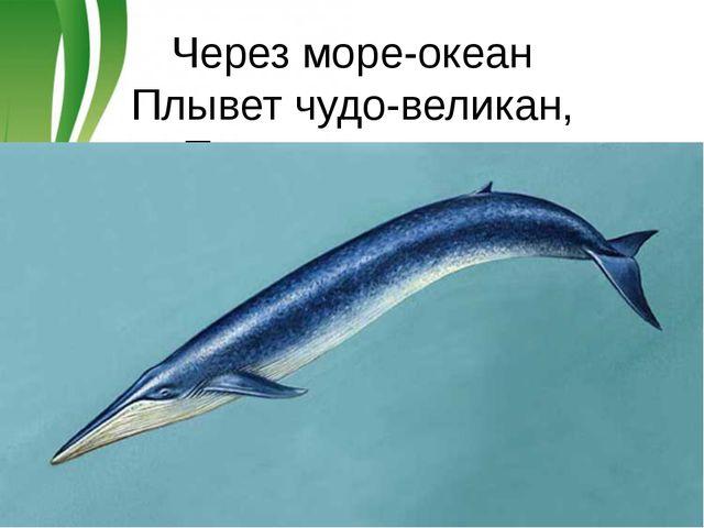 Через море-океан Плывет чудо-великан, Прячет ус во рту, Растянулся на версту...