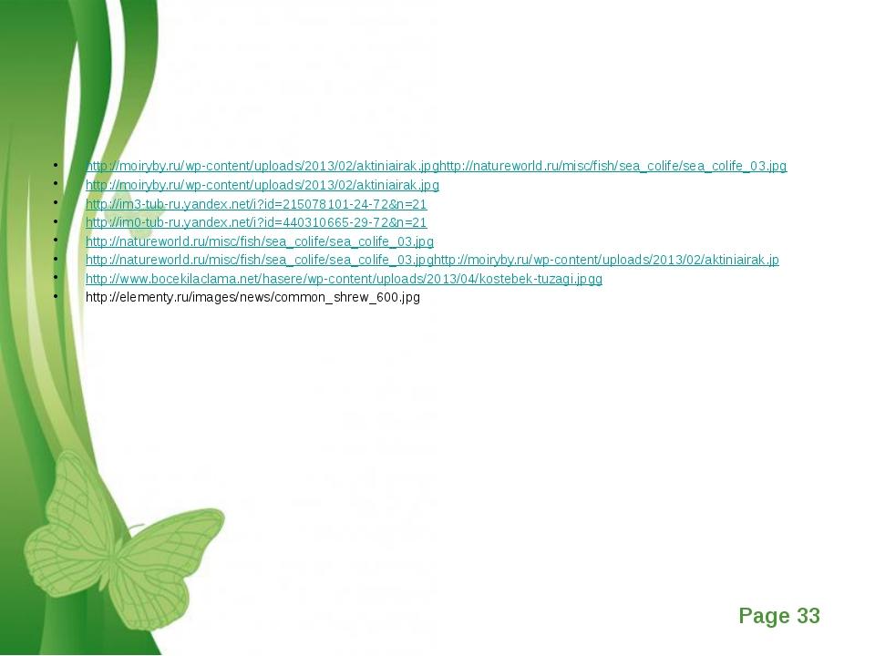 http://moiryby.ru/wp-content/uploads/2013/02/aktiniairak.jpghttp://naturewor...