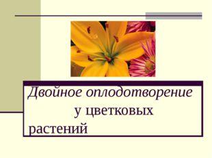 Двойное оплодотворение у цветковых растений