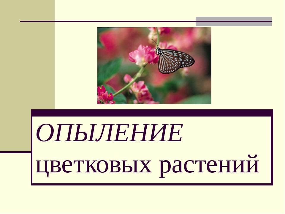 ОПЫЛЕНИЕ цветковых растений