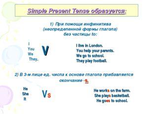 Simple Present Tense образуется: При помощи инфинитива (неопределенной формы