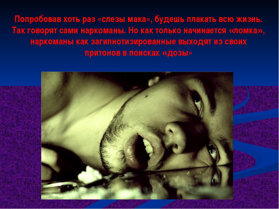 Попробовав хоть раз «слезы мака», будешь плакать всю жизнь. Так говорят сами...
