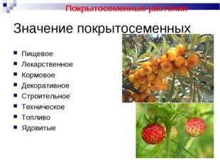 Значение покрытосеменных Пищевое Лекарственное Кормовое Декоративное Строител