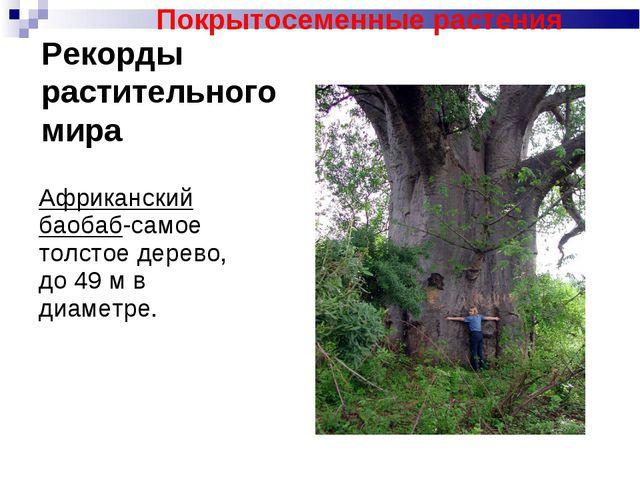Рекорды растительного мира Африканский баобаб-самое толстое дерево, до 49 м в...