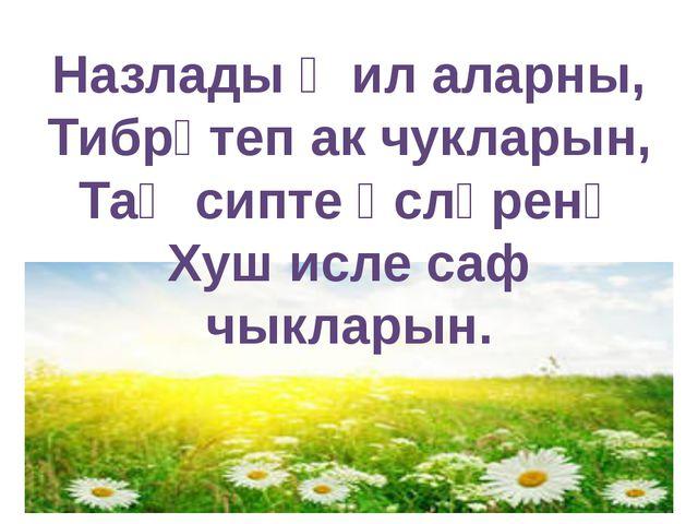 Назлады җил аларны, Тибрәтеп ак чукларын, Таң сипте өсләренә Хуш исле саф чык...