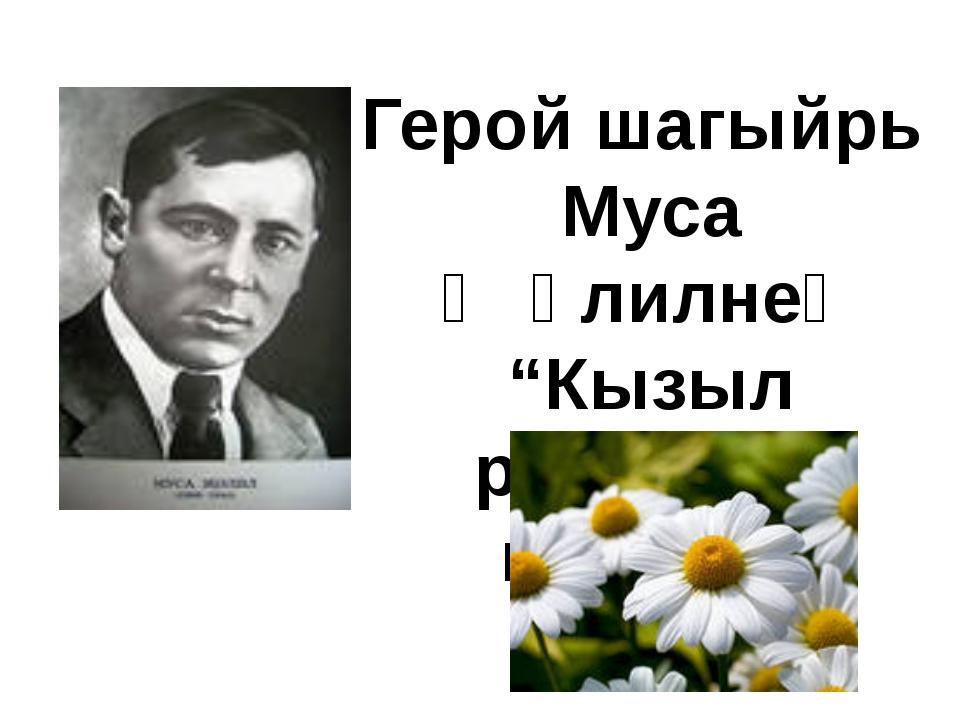 """Герой шагыйрь Муса Җәлилнең """"Кызыл ромашка"""" шигыре."""