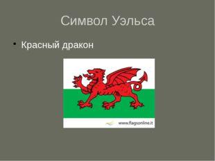 Символ Уэльса Красный дракон