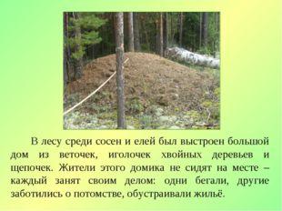 В лесу среди сосен и елей был выстроен большой дом из веточек, иголочек хвой