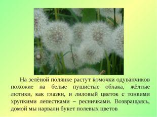 На зелёной полянке растут комочки одуванчиков похожие на белые пушистые обла