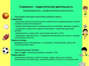 Социально – педагогическая деятельность Предупредительно – профилактическая д